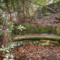 Wanderrast auf dem Weg zum #Pfaffenstein . #Elbsandsteingebirge #SaechsischeSchweiz #SaxonSwitzerland #Saxony #Germany Credits: Achim Meurer (@hdrmeurer / TMGS)  #Wanderglück #Ruhe #Wandermärchen #SächsischeSchweiz #Malerweg #Wanderweg #Fernwanderweg #Natur #elbi