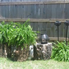 Hiding Gas Meters in my back yard