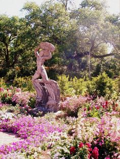 """ New Orleans Botanical Garden, City Park "" Garden City Park, Park City, Moss Garden, Green Garden, Beautiful Gardens, Beautiful Flowers, Amazing Places, Beautiful Places, Weekend In New Orleans"