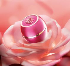 Oriflame Tender Care Rose - limited edition