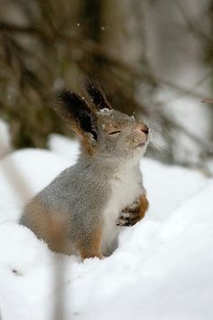 Hmmmm....so that's what snow smells like!