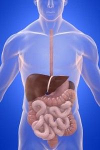 What are the Symptoms of Leaky Gut Syndrome and How to Stop It? http://new-vital.info/For/Leaky-Gut-Syndrome