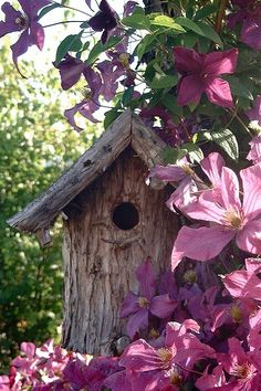 A rustic bird house in a cottage garden! Purple clematis varieties climbing up and over the bird house! Dream Garden, Garden Art, Garden Design, Garden Birds, Beautiful Birds, Beautiful Gardens, My Secret Garden, Bird Houses, Garden Inspiration