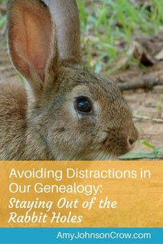 It's easy to fall down a rabbit hole when doing genealogy research. Avoiding…