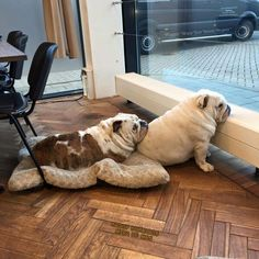 Friends let you lean on them.