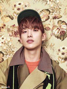 Woozi, Wonwoo, Jeonghan, The8, Seungkwan, Vernon, K Pop, Astro Sanha, Seventeen Lee Seokmin