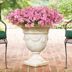 Dress up your containers with petunias. A favorite among gardeners, petunias come in a spectrum of colors and work well in almost any sunny location. Read more about petunias and other favorite annuals on the Garden Club blog.