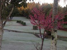 Winter at IGC