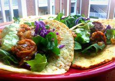 Spicy Shrimp Avocado Soft Tacos