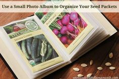 We love this idea for using an inexpensive photo album to organize and store seed packets. Is anyone else saying 'why didn't I think of this?' @Nina Gonzalez Gonzalez Camp Garden Seeds, Garden Plants, Organic Gardening, Gardening Tips, Beginners Gardening, Gardening Magazines, Gardening Gloves, Flower Gardening, Diy Pour Enfants
