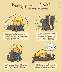 The one about staying healthy (Catsu The Cat - Comics) Crazy Cat Lady, Crazy Cats, I Love Cats, Cool Cats, Comic Cat, Catsu The Cat, Gato Animal, Cat Comics, Cat People