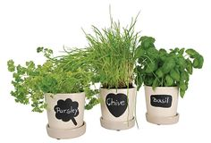Should make chalkboard labels on herb pots with chalkboard paint. Though they would probably rub off in the rain.