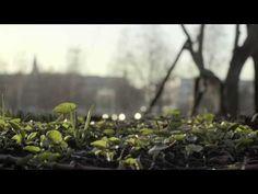 (3) Millainen vuodenaika on kevät? - YouTube