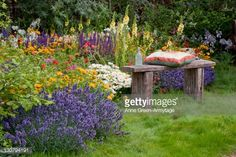 Rustic wooden bench with mixed border, including lavender (Lavendula), tickseed (Coreopsis), and daisies (Leucanthemum). 'Pastures Bye', Hampton Court Flower Show, 2009, designed by Southend on Sea Borough Council Parks Technical Team : Photo