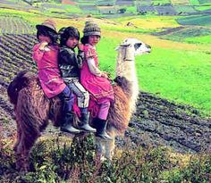 Peruvian children on pet llama.  Most llama won't carry Humans.