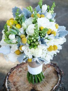 snaps nine blooms au 263322_10151395160106712_2060706505_n