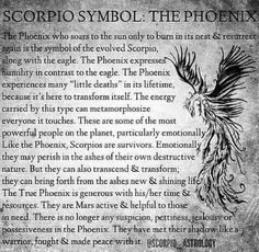 Had no idea that the Phoenix was associated with the Scorpio symbol. Awesome and totally makes me want a Phoenix tattoo ten times Scorpio Symbol, Astrology Scorpio, Scorpio Traits, Scorpio Zodiac Facts, Scorpio Quotes, Pisces, Scorpio Eyes, Scorpio Ascendant, Scorpio Personality