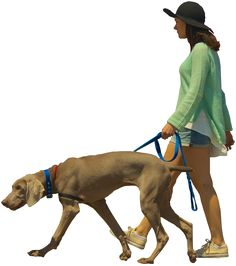 woman_walking_dog_color.png (571×646)