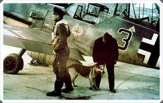 """Messerschmitt Bf 109E-7 'BLACK 3"""" Oberleutnant Hermann Segatz Staffelkapitän of 8./JG 52. His aircraft displays the Tyrolean eagle emblem."""