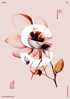 Poster Shanti by Xavier Esclusa on Behance