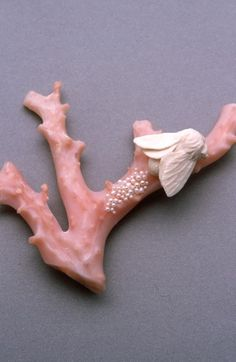 Mielle Harvey, Moth Laying Eggs on Branch 2001, carved mammoth ivory, coral, 18k gold