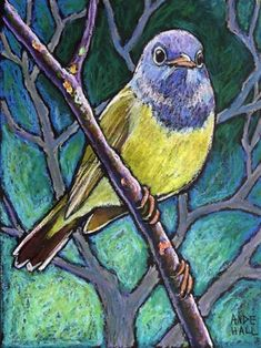 "Daily Paintworks - ""Connecticut Warbler"" - Original Fine Art for Sale - © Ande Hall Media: oil pastel Size: 12x9 in"