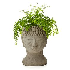 Look what I found at UncommonGoods: buddha head planter... for $140 #uncommongoods