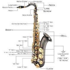 The saxophone (also referred to as the sax) is a conical- bored transposing musical instrument that is a member of the woodw. Yamaha Saxophone, Selmer Saxophone, Saxophone Instrument, Saxophone Sheet Music, Bass Clarinet, Tenor Sax, Adolphe Sax, Band Website, Easy Guitar