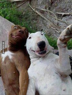 Vamos tirar uma selfie amigo.