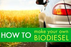 Looking for an Eco-Friendly Way to Fuel Your Car? Make Your Own Biodiesel! | Inhabitat - Sustainable Design Innovation, Eco Architecture, Green Building