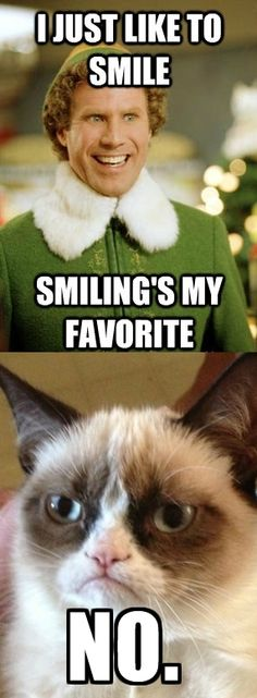 Grumpy Cat meets Buddy the Elf.