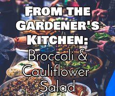 Somervell County Master Gardener Association's Recipes from the Garden: Broccoli & Cauliflower Salad