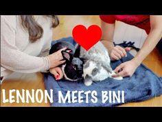 BINI THE BUNNY TEACHES LENNON TRICKS!