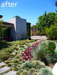 Before and After: Turf-Free Front Yard