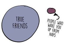 11 Charts That Will Speak To Everyone Who Fucking Loves Sleep