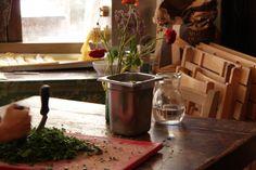 fresh parsley- Osteria Paradiso Perduto - Cannaregio, 2540 - Venice - http://ilparadisoperduto.wordpress.com