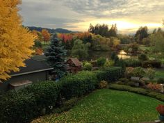 Summer Lake in Tigard, Oregon.lucky to live 4 houses down from this beautiful park! Beautiful Park, Beautiful Homes, Beautiful Places, Tigard Oregon, Oregon Trail, Nice View, Pacific Northwest, The Fresh, Adventure Travel