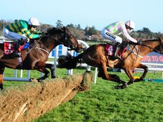 Young guns still excite O'Brien  https://www.racingvalue.com/young-guns-still-excite-obrien/