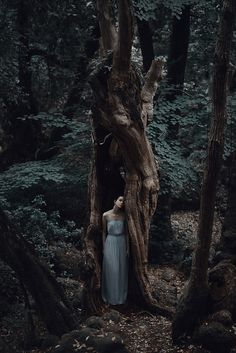 https://flic.kr/p/t6YGgY | Dark Woods |    Facebook     Tumblr
