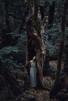 Dark Woods | Tumblr