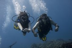 PADI duikopleiding in het zuiden van Tenerife.