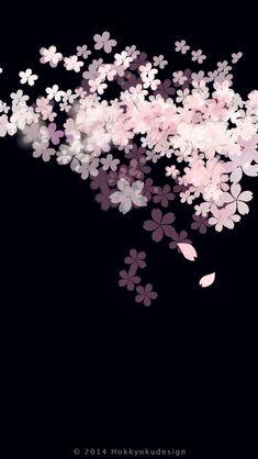 おしゃれな夜桜イラスト | スマホ壁紙/iPhone待受画像ギャラリー