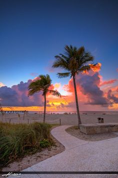Sunrise at the beach in Pompano Beach Florida along the pier with some Coconut Palm Trees. HDR  image created using Photomatix Pro and Aurora HDR software.