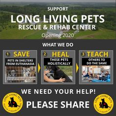 @rawpets posted to Instagram: Since this is Giving Tuesday I like to share something that is very dear to my heart and is also my next project...   Help me open the first natural rescue and rehab center for animals.   We are different since...  ✔ We will rescue unadoptable pets facing euthanasia due to medical conditions and/or behavioral issues.   ✔ We will  restore their physical and mental health using only NATURAL modalities.   ✔ We will share and teach our concept to others so they can do t Giving Tuesday, Behavioral Issues, We Need You, Research Projects, Live Long, Medical Conditions, Help Me, Restore, Healthy Life