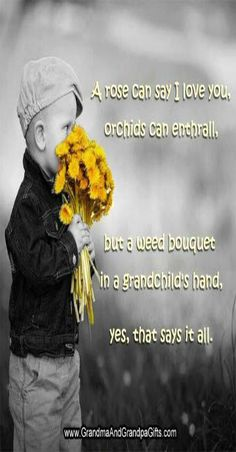 A rose can say I love you, orchids can enthrall. But a weed bouquet in a grandchild hand, yes, that says it all. Love My Kids, Say I Love You, Quotes About Grandchildren, Grandmothers Love, Grandma Quotes, Grandma And Grandpa, Grandma Gifts, Special Quotes, Grandparents