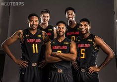Terps