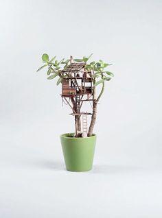 The American artistJedediah Corwyn Voltzis having funcreating beautiful miniature tree-houses to decorate your indoor plants, buildingtiny poetic univer