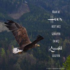 Maar de Heer heeft mij geholpen en mij kracht gegeven. 2 Timothëus 4:17 #Heer, #Kracht
