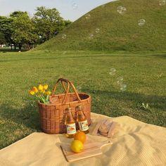picnic aesthetic for jordan and i Spring Aesthetic, Nature Aesthetic, Aesthetic Photo, Aesthetic Pictures, Aesthetic Green, Disney Aesthetic, Photography Aesthetic, Aesthetic Pastel, Fotografia Retro