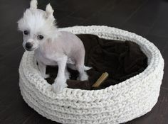 MakaMarr: Virkattu koiran peti